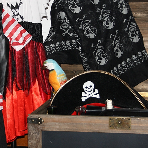 piraten kinderpartijtje Leiden