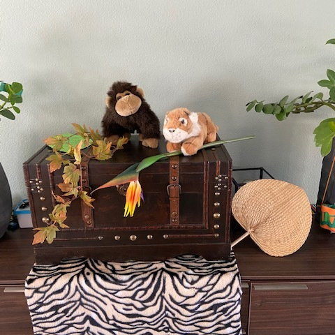 Jungle themakist kinderverjaardag